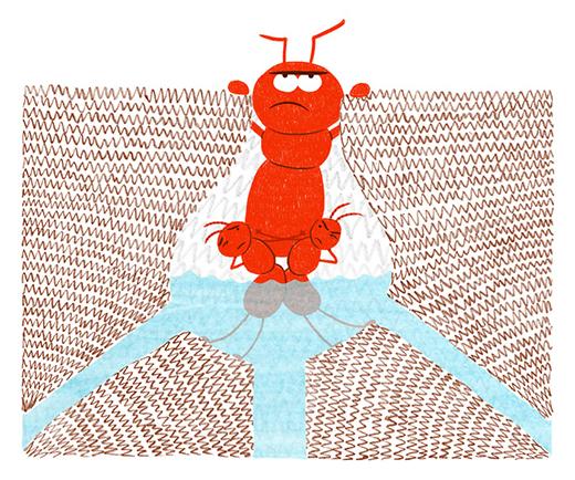 ESR-ant-survival-2-blog