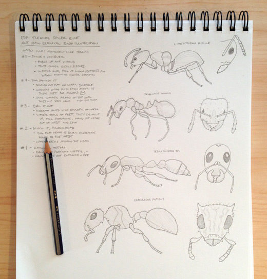 ESR-ant-survival-process-b-blog